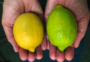 frutas-limão