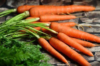 Cenoura: É legume? Veja os benefícios!