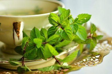 Chá verde: Para Que Serve? Como Fazer?