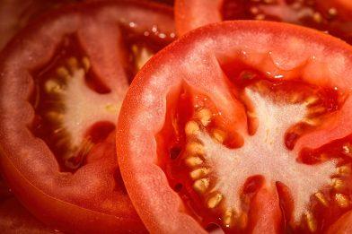 Tomate: É fruta? Curiosidades Saudáveis